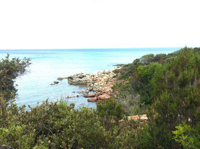 The Sea Corsica